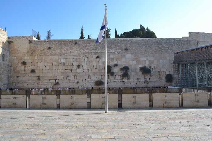 Facts and Figures, Western Wall Heritage Foundation