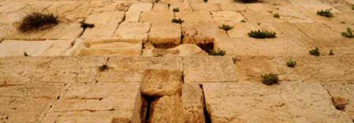 Фонд наследия Стены Плача|הכותל המערבי