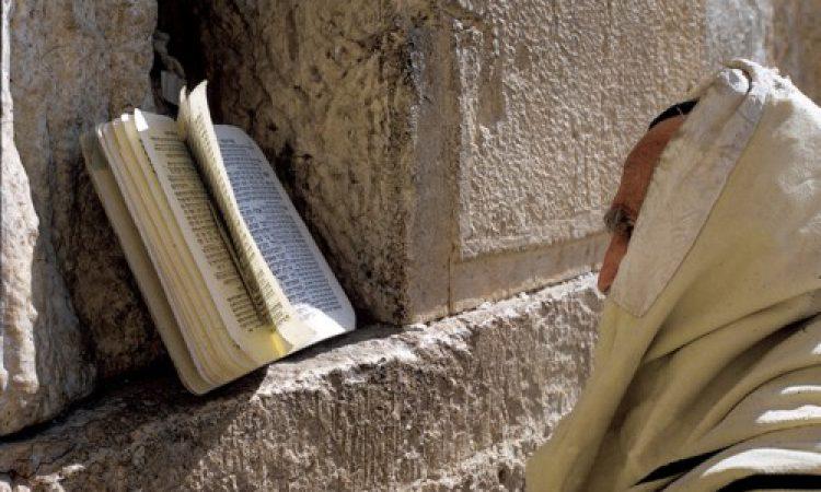 יהודי מתייחד בתפילה סמוך לכותל (ורנר בראון)